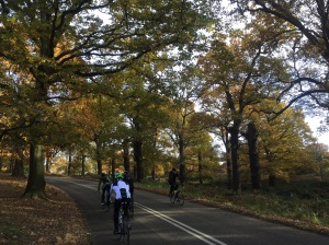 Richmond Park cycling autumn
